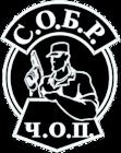 Установка СКУД от ООО ЧОО СОБР в Екатеринбурге
